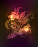 Ornamento floral que brilla intensamente Imagen de archivo libre de regalías