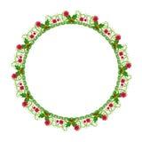 Ornamento floral redondo em um fundo branco foto de stock royalty free