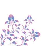 Ornamento floral rosado azul encrespado aislado en blanco Foto de archivo libre de regalías
