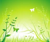 Ornamento floral - verde Stock de ilustración