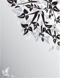 Ornamento floreale Fotografia Stock Libera da Diritti
