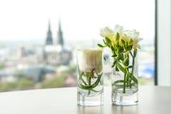 Ornamento floreale davanti ai DOM di Colonia fotografia stock