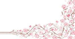 Ornamento floreale della primavera Fotografia Stock Libera da Diritti
