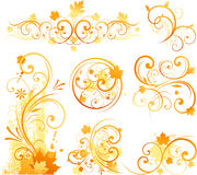 Ornamento floreale di autunno Fotografia Stock