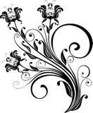 Ornamento floreale - vettore Fotografie Stock Libere da Diritti