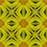 Ornamento geométrico Fotos de Stock Royalty Free