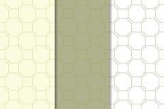 Ornamento geométricos do verde azeitona e os brancos Jogo de testes padrões sem emenda Fotografia de Stock Royalty Free