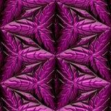 Ornamento maias cor-de-rosa Imagens de Stock