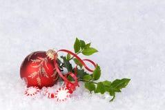 Ornamento na neve com doces e azevinho do peperment Foto de Stock Royalty Free