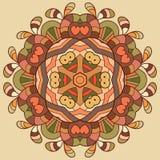Ornamento organico del pizzo del cerchio Immagini Stock