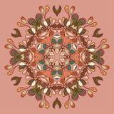 Ornamento organico del pizzo del cerchio Immagine Stock
