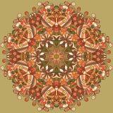 Ornamento organico del pizzo del cerchio Fotografia Stock