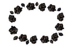 Ornamento ovale delle rose nere fotografia stock libera da diritti