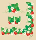 Ornamento retangular do quadro com morangos Fotografia de Stock Royalty Free