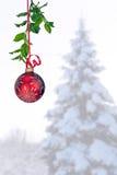 Ornamento rojo colgante contra fondo del invierno Fotos de archivo libres de regalías