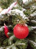 Ornamento rojo de la Navidad en el árbol, nieve, cierre para arriba fotos de archivo libres de regalías