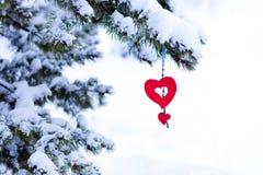 ornamento rojo del corazón del árbol de navidad nevoso Fotos de archivo