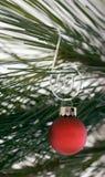 Ornamento rojo en percha rizada Fotos de archivo