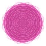 Ornamento rosado circundado Fotografía de archivo