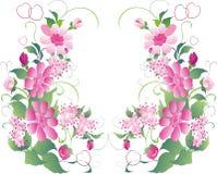 Ornamento rosado y verde de la flor ilustración del vector