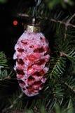Ornamento rosso su un albero di Natale immagine stock
