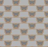 Ornamento sem emenda do kelt Fotografia de Stock Royalty Free