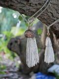 Ornamento tradicionais feitos a mão feitos dos escudos e das cordas unidos a um ramo de árvore imagem de stock