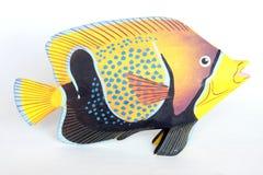 Ornamento tropical de los pescados Imagenes de archivo