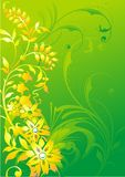 Ornamento vegetativo abstracto en un fondo verde Fotos de archivo libres de regalías