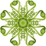 Ornamento verde Fotografia Stock Libera da Diritti
