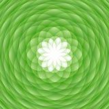 Ornamento verde abstracto Fotografía de archivo libre de regalías