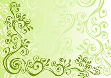 Ornamento verde, cinzento e branco Fotos de Stock