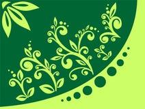 Ornamento verde dos folhetos ilustração royalty free
