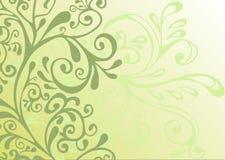Ornamento verde, grigio e bianco Fotografia Stock