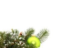 Ornamento verde no pinho Fotografia de Stock Royalty Free
