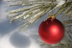 Ornamento vermelho do Natal na árvore de pinho nevado Fotografia de Stock