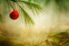 Ornamento y árbol Foto de archivo