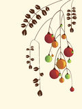 Ornamentos libre illustration