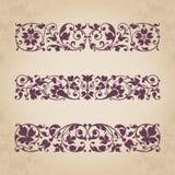 Ornamentos caligráficos para el diseño - sistema del vector Imagenes de archivo
