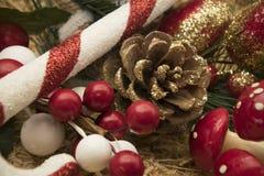 Ornamentos de la Navidad del país Foto de archivo