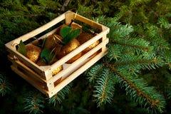 Ornamentos de la Navidad en el árbol de navidad vivo Fotografía de archivo