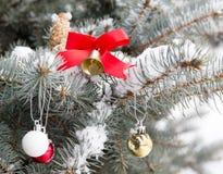 Ornamentos de la Navidad en una rama de la picea Fotos de archivo libres de regalías