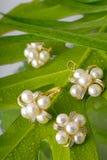 Ornamentos de la perla Fotos de archivo