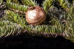 Ornamentos de Noel en negro Fotografía de archivo