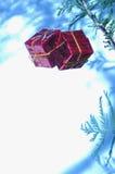 Ornamentos del conjunto de la Navidad con el espacio blanco Imagen de archivo libre de regalías