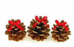 Ornamentos del cono del pino Imagen de archivo