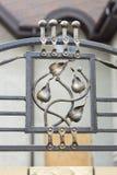 Ornamentos del hierro labrado para las puertas y la cerca Fotografía de archivo