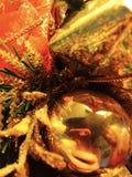 Ornamentos del ?rbol de navidad foto de archivo