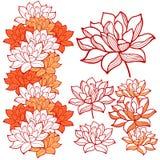 Ornamentos elegantes de las flores de loto Imagen de archivo libre de regalías