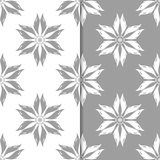 Ornamentos florales blancos y grises Conjunto de fondos inconsútiles Fotografía de archivo libre de regalías
